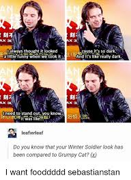 Winter Soldier Meme - 25 best memes about winter soldier winter soldier memes