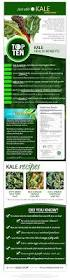 best 25 nutrition information ideas on pinterest kale benefits