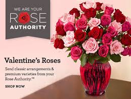cheap flower delivery 20 valentines flowers at 1800flowers 25 plus 15 50 amex offer