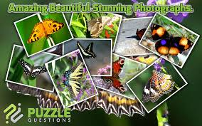 free butterfly puzzle games android apps on google play