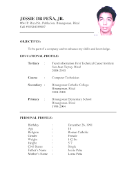 application resume format create best resume format for application resume format