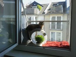 balkon katzensicher machen fenster katzensicher durch den katzenbalkon vom katzennetz profi