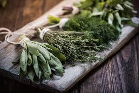 les herbes aromatiques en cuisine herbes aromatiques variétés et bienfaits régal
