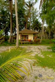 82 best resort hotels bungalows and huts on phangan images on