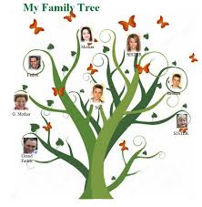 family tree template microsoft office 2010 pictures reference