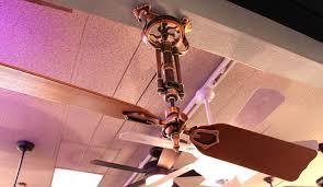 fanimation caruso ceiling fan fanimation brewmaster ceiling fan youtube