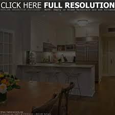 small small condo kitchen kitchen design ideas and photos for