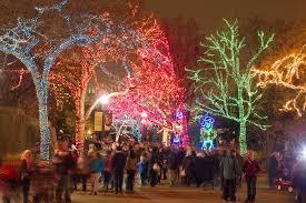 Chicago Lincoln Park Zoo Lights by день подяки 2016 чикаго чим зайнятися в листопаді і не тільки