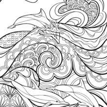 paisley hearts flowers anti stress coloring design coloring