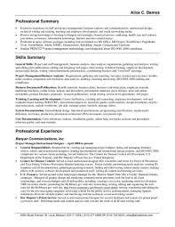 professional summary resume customer service resume summary jvwithmenow shalomhouse us