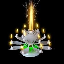 amazing birthday candle white musical lotus flower happy birthday candle and creme kids