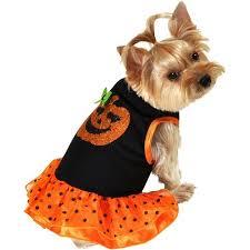Female Dog Halloween Costumes 44 Disfraz Perro Images Pet Clothes Puppies