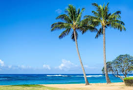 Hawaii beaches images Best hawaii beaches islands jpg