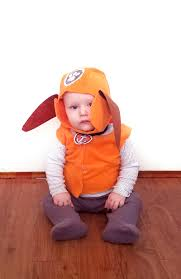 Baby Gnome Halloween Costume 100 Amazon Disguise Costumes Baby Toddler Garden Gnome