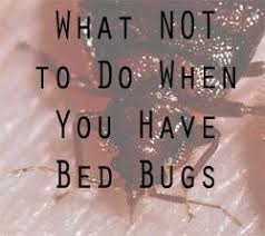 Bed Bug Controlling Bed Bugs By Hand Let U0027s Beat The Bed Bug