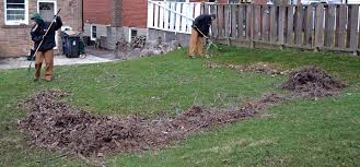 spring yard clean up property solutions co since 1999