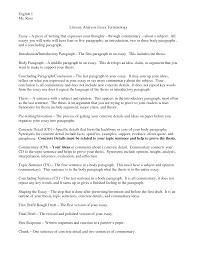 Literature Review Outline Template        Free Sample  Example     Amazon UK     write a literature review   Examples critique essays durdgereport web fc com Examples critique essays