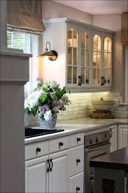 Kitchen Cabinet Ideas Small Kitchens by Kitchen Ikea Kitchen Organization Extra Shelves For Kitchen