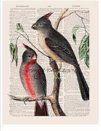 Items Similar To Art Print - 46 best bmarinacci bird prints images on pinterest bird prints