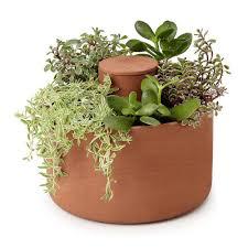 self watering planters 8 best indoor self watering planters for