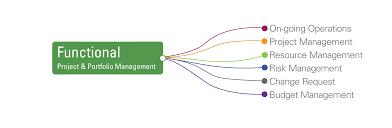 functional managers sciforma valuetank