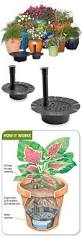 Self Watering Planters The 25 Best Self Watering Pots Ideas On Pinterest Grow Boxes