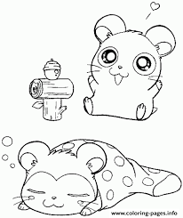 super cute sleeping hamster coloring page8d68 coloring pages printable