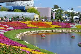 disney flower and garden gardening ideas