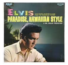 hawaiian photo album lot detail collection of 14 rca victor elvis lps