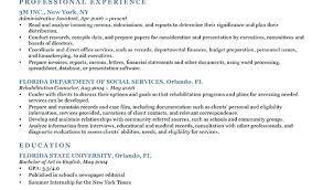 resume bullet points exles resume bullet points exles unique photograph of resume bullet