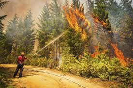 Bc Wildfire Drone by Drones Get Approval For Use In Fighting British Columbia Wildfires