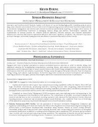 sle resume for business analyst profile resumes sle resume business analyst business analyst resume sle