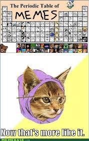 Hipster Kitty Meme - reframe undiscovered elements memebase funny memes