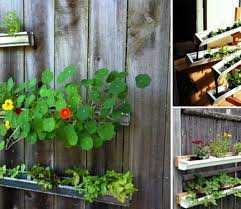 vertical gardening archives balcony garden web