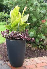 Outdoor Container Gardening Ideas 5 Simple Garden Container Ideas Your Easy Garden