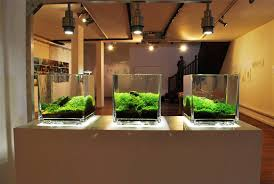 Contemporary Interior Designs For Homes by Home Accessories Extraordinary Aquascape Designs For Modern Home