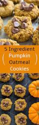 pinterest thanksgiving cookies best 25 maple syrup cookies ideas on pinterest maple syrup cake