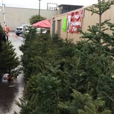 Wholesale Christmas Decorations In Los Angeles Ca by Frosty U0027s Christmas Trees 35 Photos U0026 36 Reviews Christmas