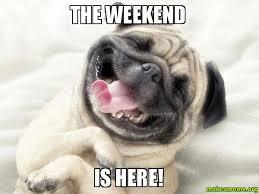 Happy Weekend Meme - the weekend is here happy dog make a meme