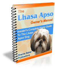 complete lhasa apso insider u0027s guide