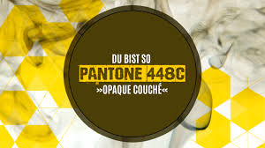 Opaque Couche 100 Opaque Couche Plain Packs And No More 10 U0027s New