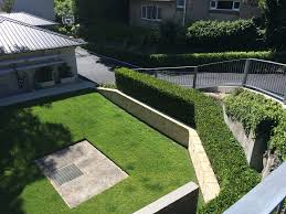 landscaping northern beaches green fig landscaping sydney design construction maintenance