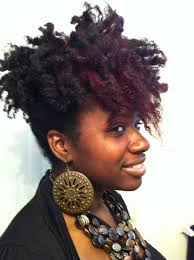 natural hair inspiration and professional stylist shauntée