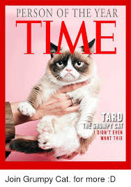 Tard The Grumpy Cat Meme - 25 best memes about the grumpy cat the grumpy cat memes