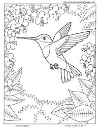 pages to color animals 1436 best coloring pages images on pinterest drawings