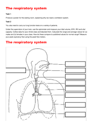 breathing respiration and the respiratory system revision booklet