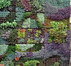 How To Make Vertical Garden Wall - urban zeal planters vertical gardens self watering planters