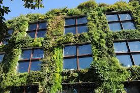 how to make a living wall planter ebay