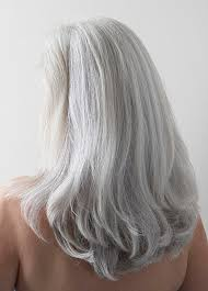 grey hair highlights and lowlights photos of gorgeous gray hairstyles
