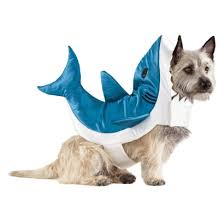 Halloween Costumes Shark Shark Pet Costume Target The17thman